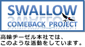 SWALLOW COMEBACK PROJECT